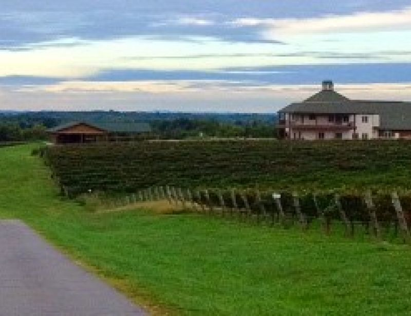 RayLen Vineyards & Winery